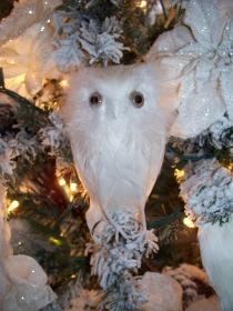 """White Owl 8"""""""